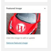 get wordpress blog featured image